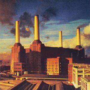 עטיפת התקליט  - Pink Floyd Animals
